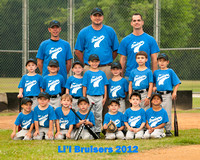 Lil Bruisers 2012